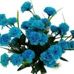 turquoise_flowers