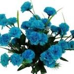 turquoise_flowers