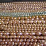 Logo-Julleen-Carpet-of-Pearls4
